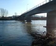 2015-01-15 SOZ-Ciscenje korita rijeke Bosne (2)