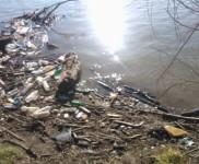2015-01-15 VIDRA-Ciscenje korita rijeke Bosne (28)