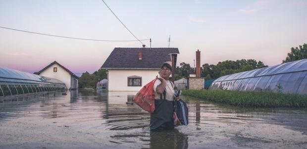 E Dok je voda nadolazila i uništavala plastenike zemljoradnici su brali što se još ubrati dalo