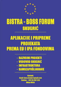boss-forum-v-15-620px-web