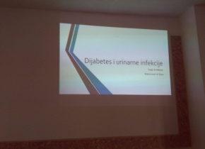 2016-11-14-ho-szm-predavanje-o-diabetesu-14
