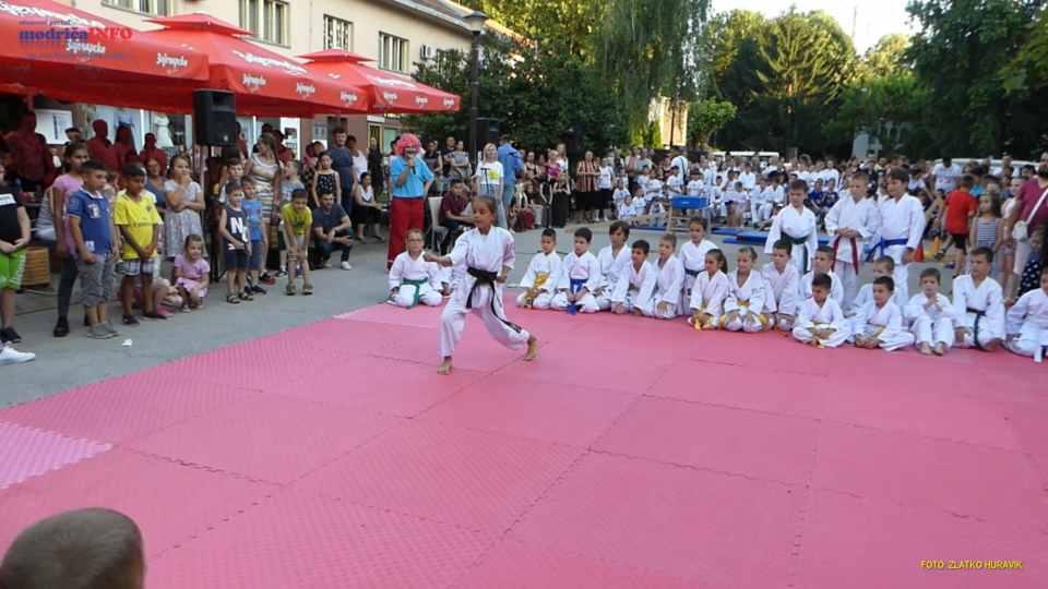 2019-06-26 VESELO DJEČIJE VEČE (115)